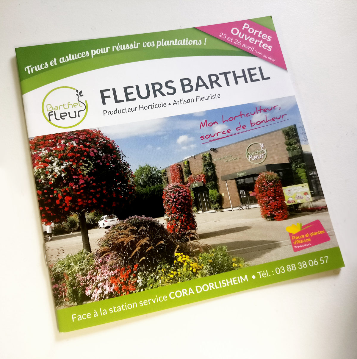 Barthel fleurs site internet supports de communication for Vente de fleurs sur internet