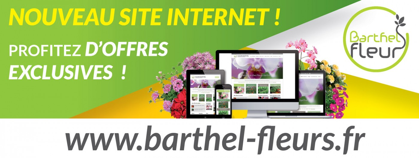 Barthel fleurs site internet et animation du point de for Vente de fleurs sur internet